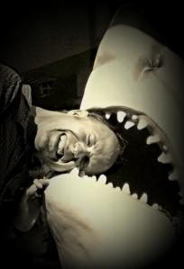 edf_shark