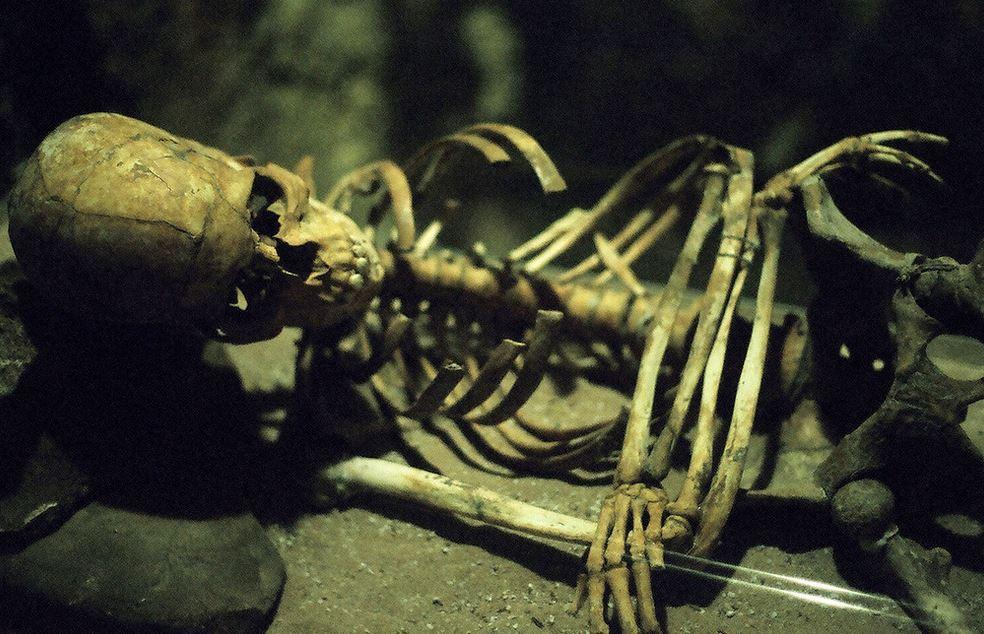 Bones – by NatalieCrick